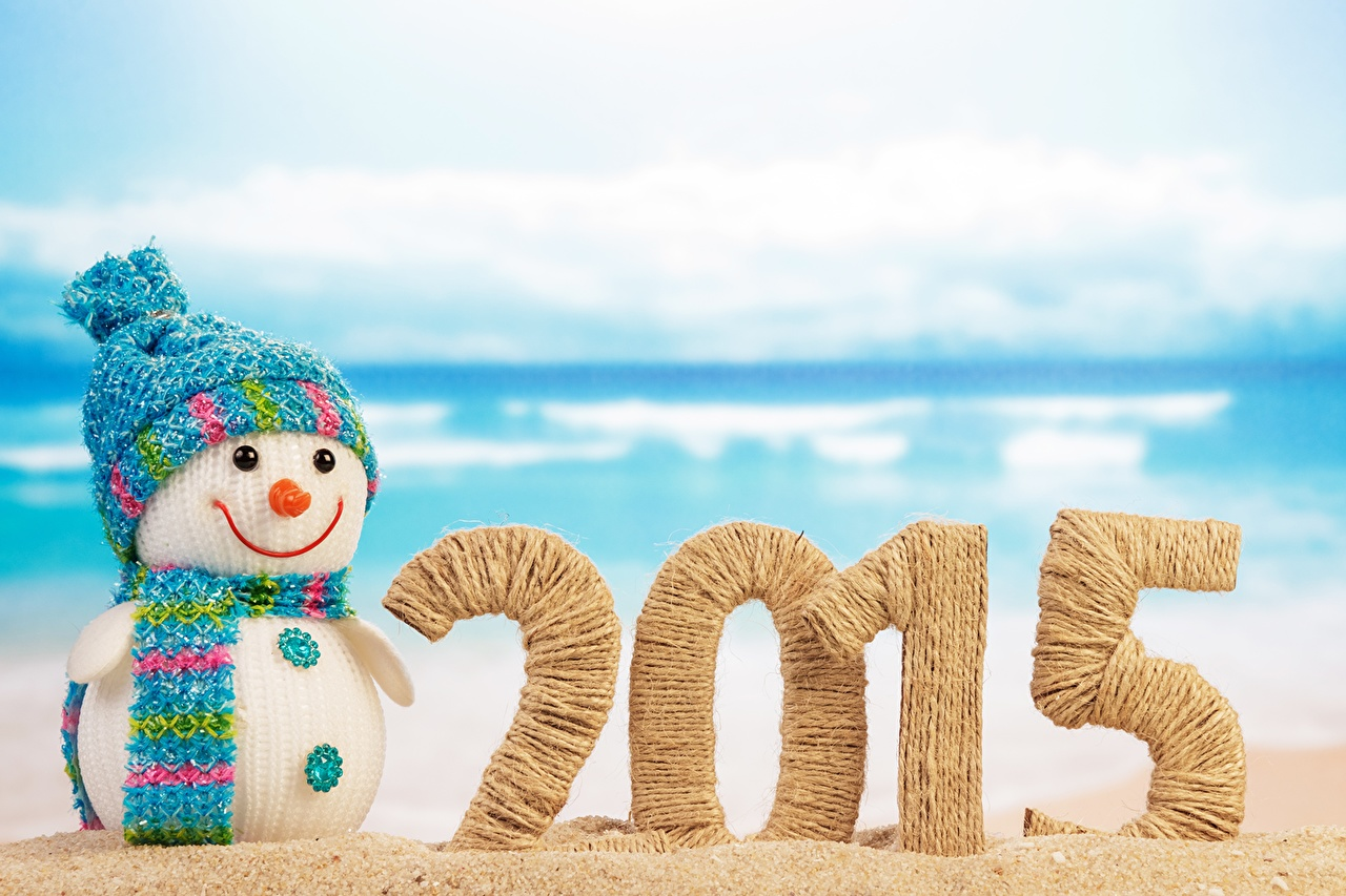 Фотографии 2015 Новый год шапка Снеговики Праздники Рождество Шапки в шапке снеговик снеговика