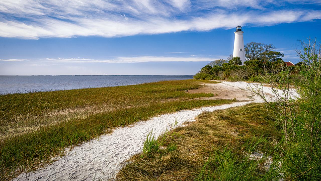Картинка Флорида штаты Маяки Природа песке Трава берег США Песок песка траве Побережье