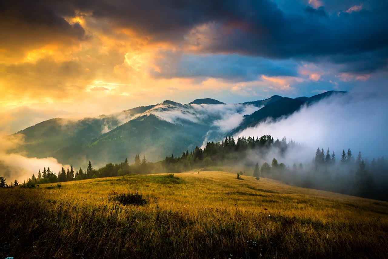 Фотография Карпаты Украина Горы Природа Небо Пейзаж Рассветы и закаты Трава Облака