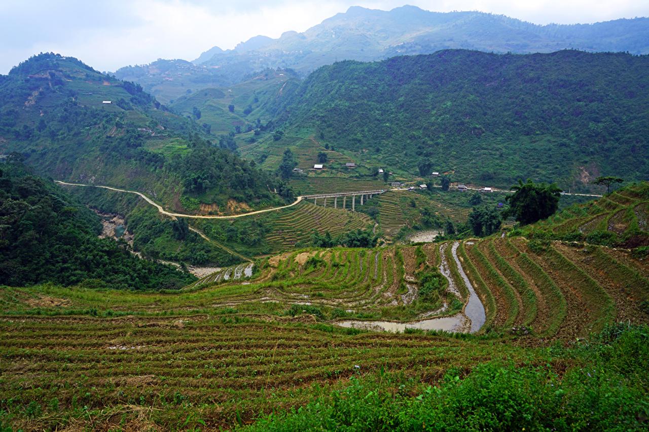 Обои Вьетнам Muong Hoa Valley Горы Природа Поля Дороги