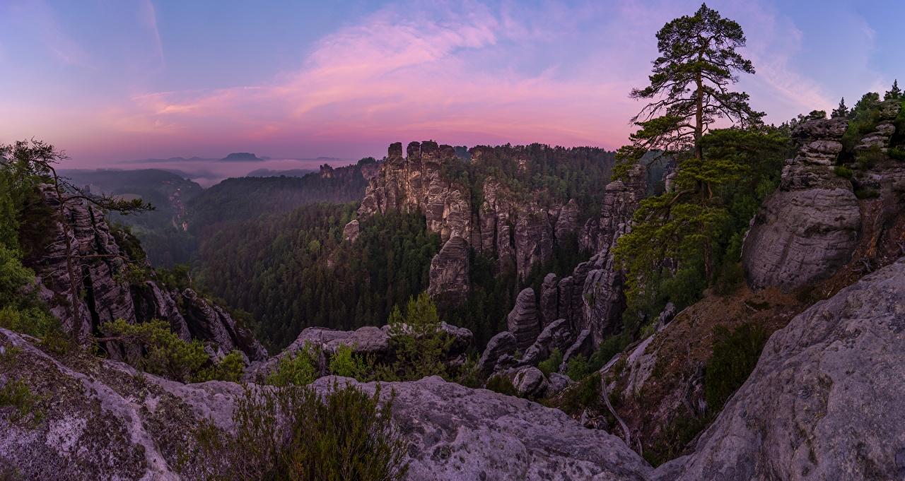 Фотография Германия Bastei Cliffs Скала Природа Леса Парки Вечер Утес скале скалы лес парк