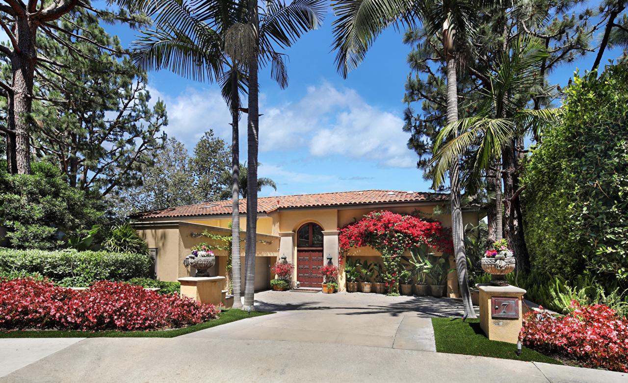 Картинка америка Newport Beach пальма Особняк Дома город кустов Дизайн США штаты пальм Пальмы Кусты Здания Города дизайна