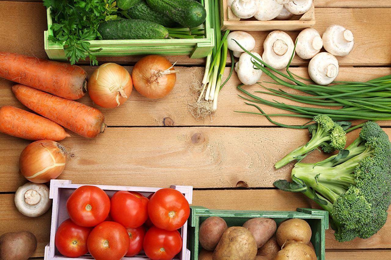 Фотография Морковь Капуста Помидоры Картофель Лук репчатый Грибы Овощи Продукты питания Томаты морковка картошка Еда Пища