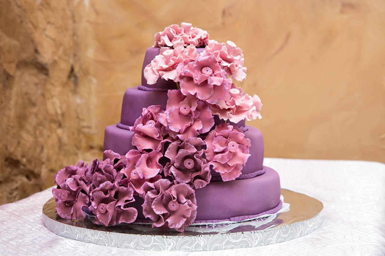 Картинка Торты Фиолетовый Еда Дизайн Пища Продукты питания