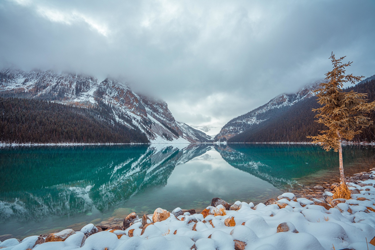Фото Банф Канада lake Louise Горы Природа Снег Парки Озеро Камни Деревья Камень