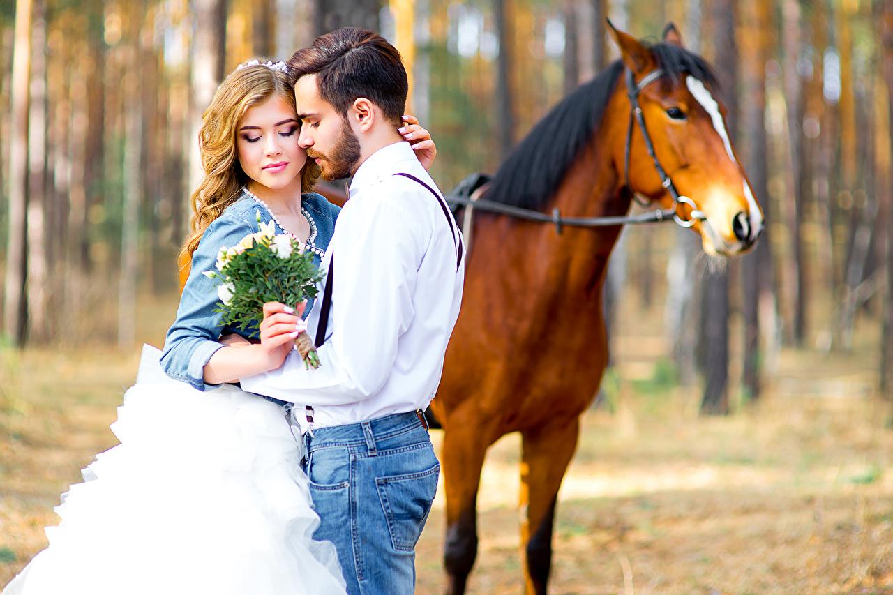 Фотографии Лошади Свадьба Блондинка Мужчины Влюбленные пары Букеты Любовь вдвоем Девушки любовники 2 Двое