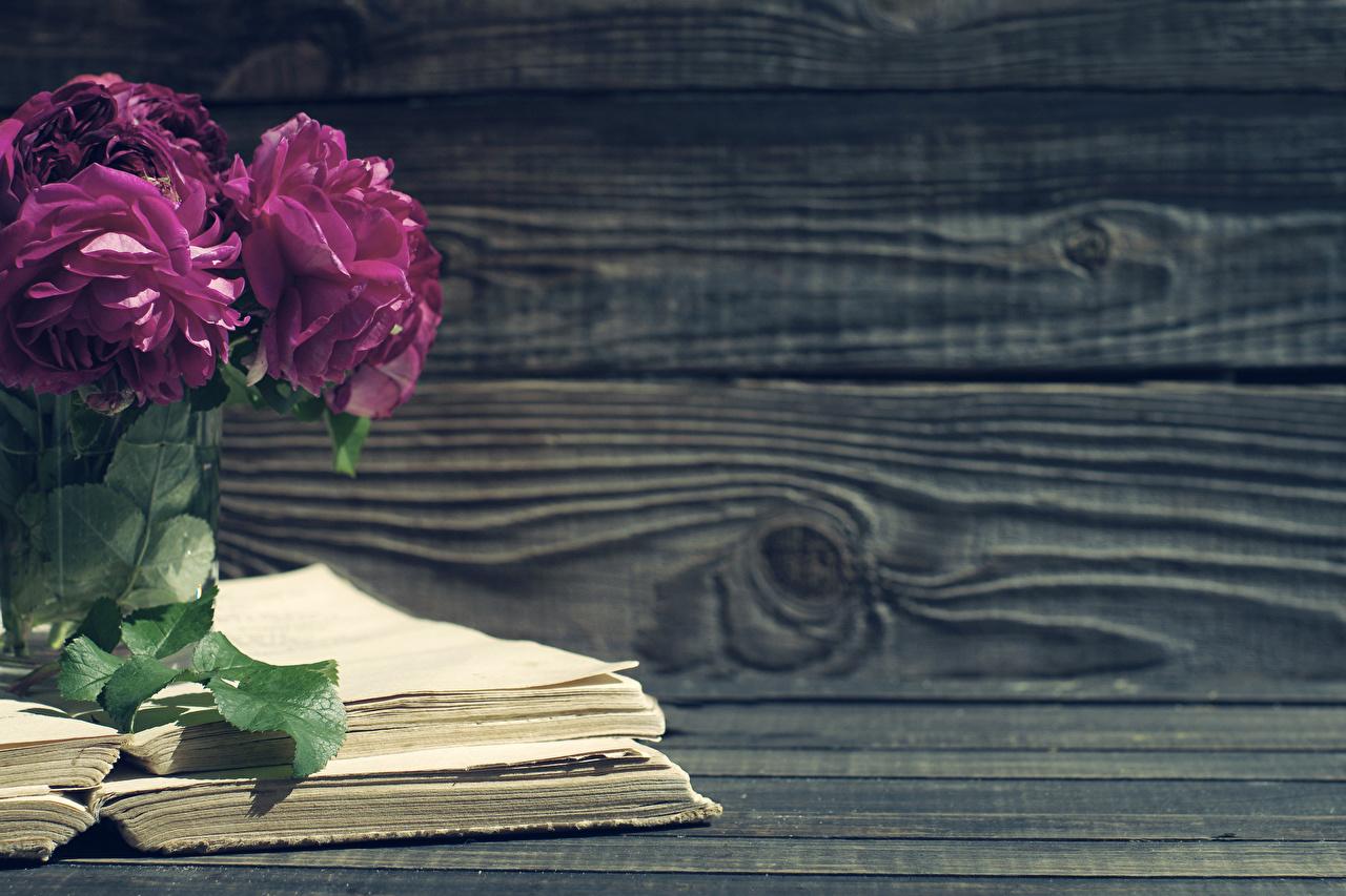 Фотография пион Цветы Книга Доски Пионы цветок книги