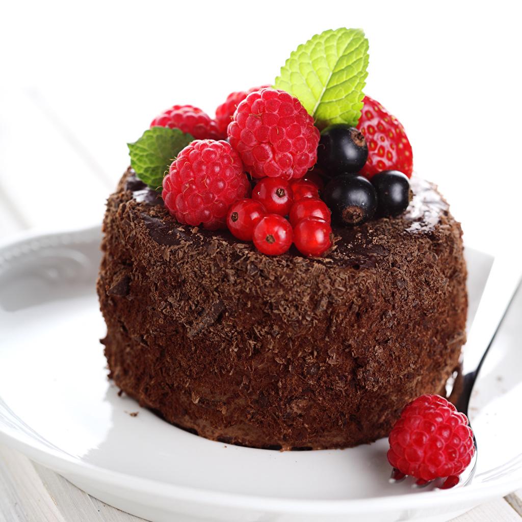 Фотографии Шоколад Торты Малина Смородина Продукты питания Сладости Белый фон Еда Пища
