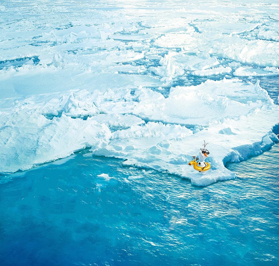 Картинки Холодное сердце Walt Disney 2013 Arendelle Olaf льда Мультфильмы снеговика Лед мультик Мультики снеговик Снеговики