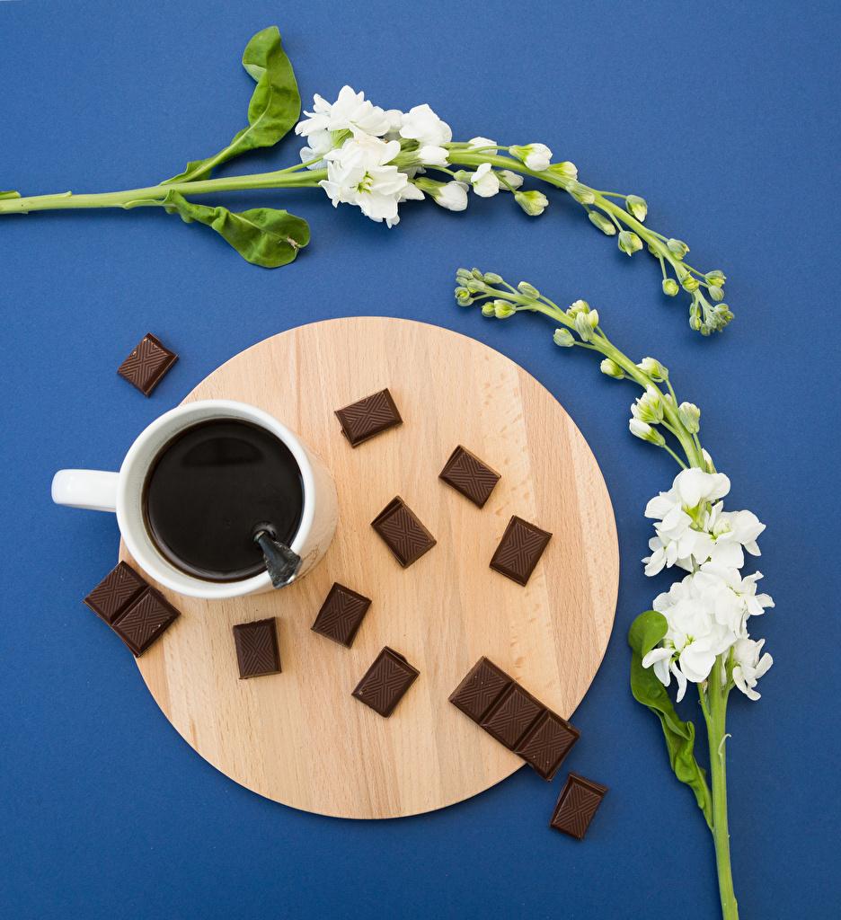 Фото Шоколад Кофе Цветы Маттиола Чашка Продукты питания Цветной фон Левкой Еда Пища чашке