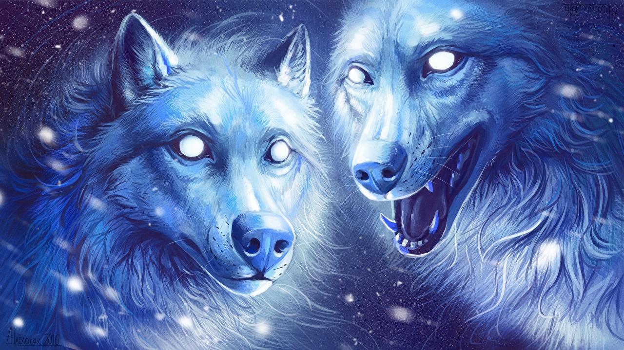 Фото Волки Двое Животные Рисованные