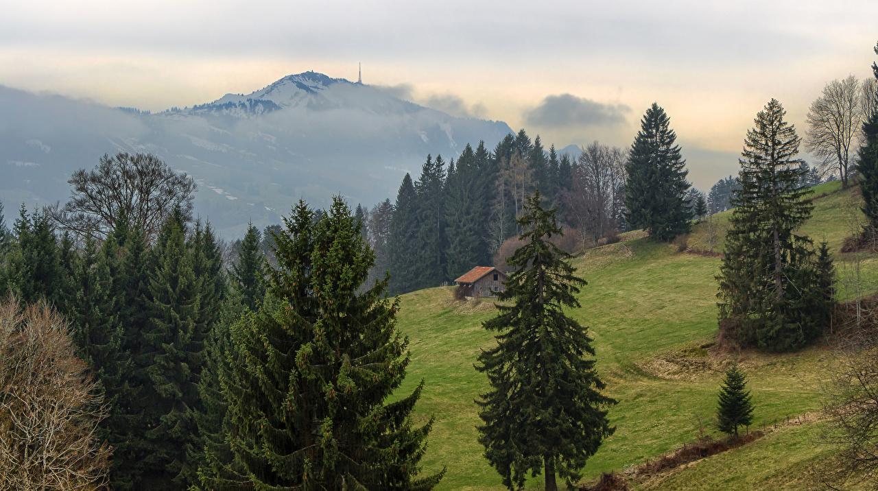 Фотография Бавария Германия Brackenberg Ель Горы Природа Луга Здания Дома