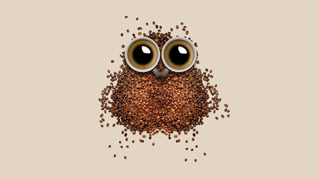 Фотографии Совообразные Кофе Зерна Креатив Пища Чашка сова совы зерно оригинальные Еда чашке Продукты питания