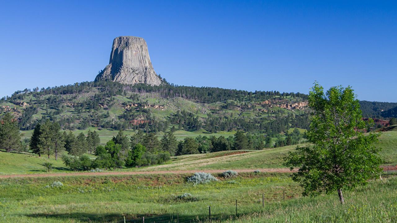 Картинка США Devils tower, Wyoming Скала Природа Холмы Трава Деревья штаты Утес
