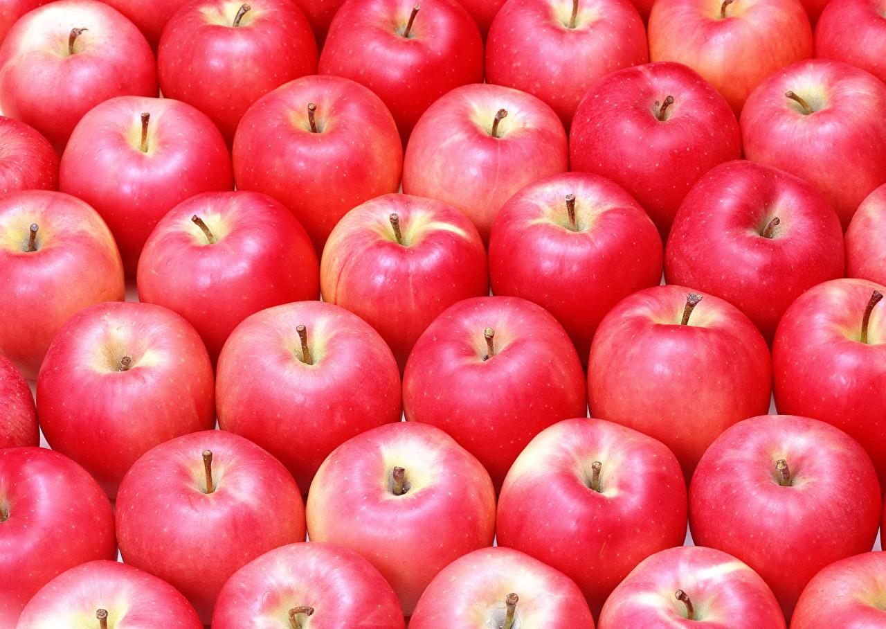 Фото Текстура Красный Яблоки Продукты питания Много красная красные красных Еда Пища