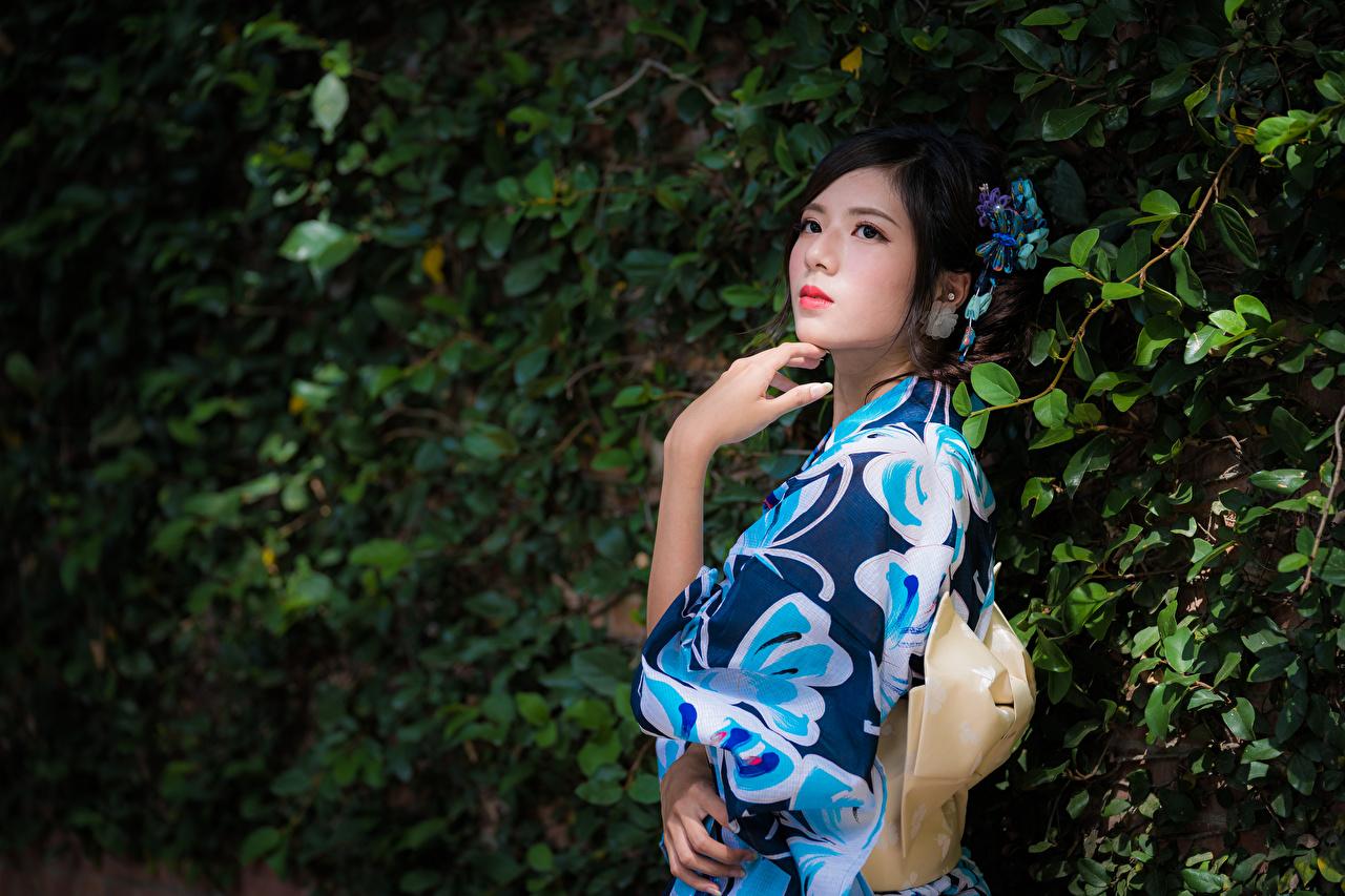 Фотографии Брюнетка Поза Кимоно Девушки азиатки Руки ветвь брюнетки брюнеток позирует девушка молодая женщина молодые женщины Азиаты азиатка рука Ветки ветка на ветке