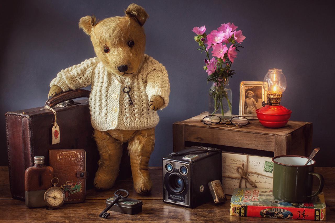 Фото Мишки Мальва Чемодан Книга Кружка Натюрморт Плюшевый мишка