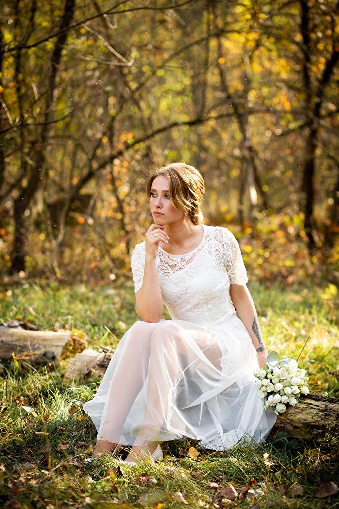 Картинки Листва невесты букет Осень молодая женщина сидя траве платья  для мобильного телефона лист Листья Невеста Букеты осенние девушка Девушки молодые женщины Трава Сидит сидящие Платье