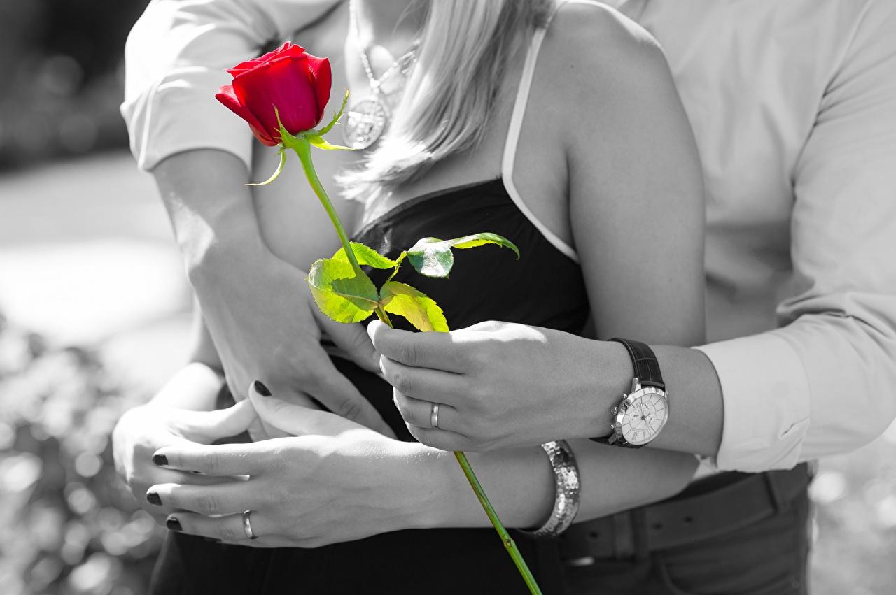 Фотография любовники Розы Часы вдвоем Объятие Кольцо Руки Влюбленные пары 2 Двое