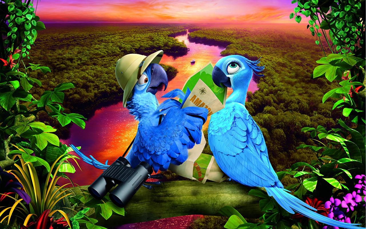 Картинка Рио Попугаи вдвоем Мультики животное 2 два две Двое мультик Мультфильмы Животные