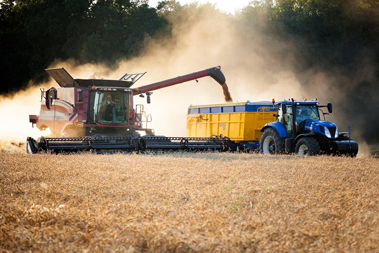Картинки Зерноуборочный комбайн трактора Поля Трактор тракторы