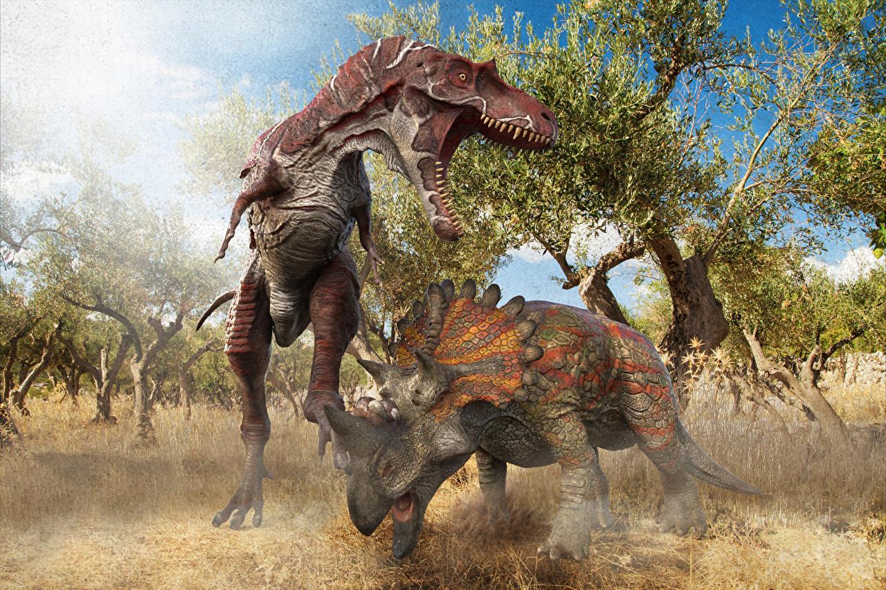 Фото Динозавры Albertosaurus vs Regaliceratops 3д Оскал Животные Древние животные динозавр 3D Графика злой рычит злость животное