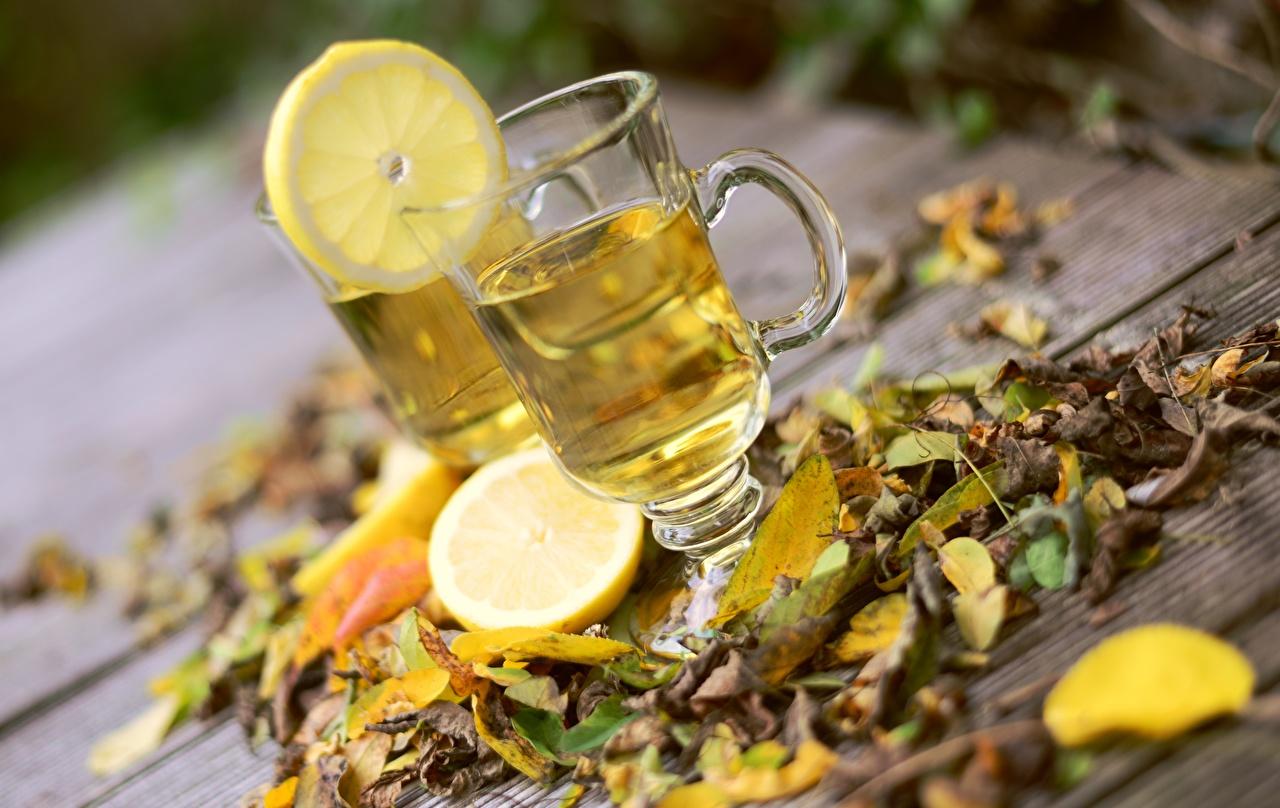Фотографии лист Чай осенние Лимоны Пища Чашка Листва Листья Осень Еда чашке Продукты питания
