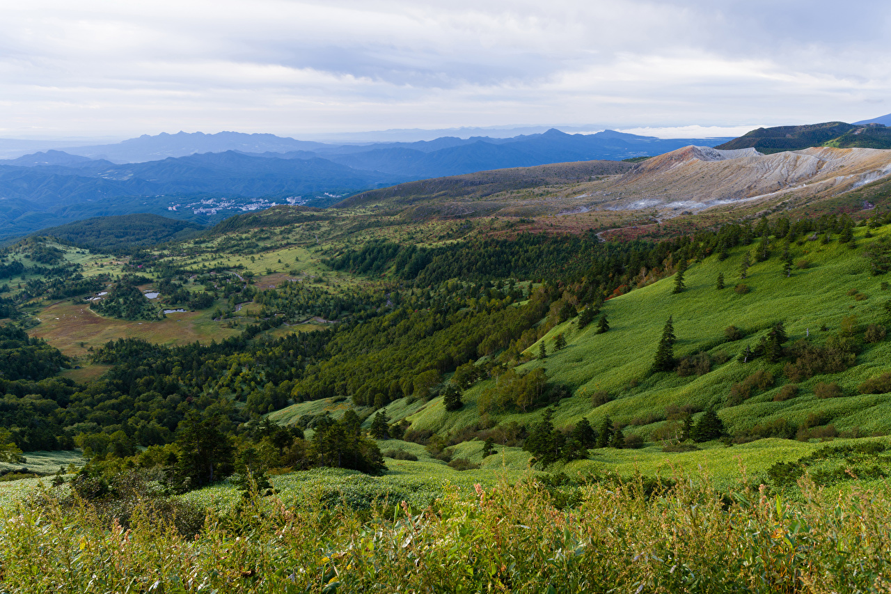 Фото Италия Природа Луга Леса холм Пейзаж лес Холмы холмов