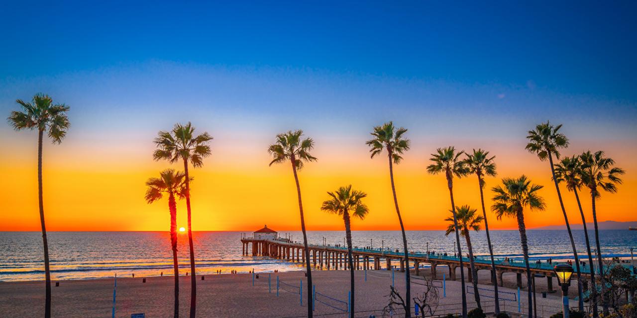 Фотографии америка Manhattan Beach Пляж Природа пальм Рассветы и закаты берег Пристань США штаты пляжа пляже пляжи Пальмы пальма рассвет и закат Пирсы Причалы Побережье