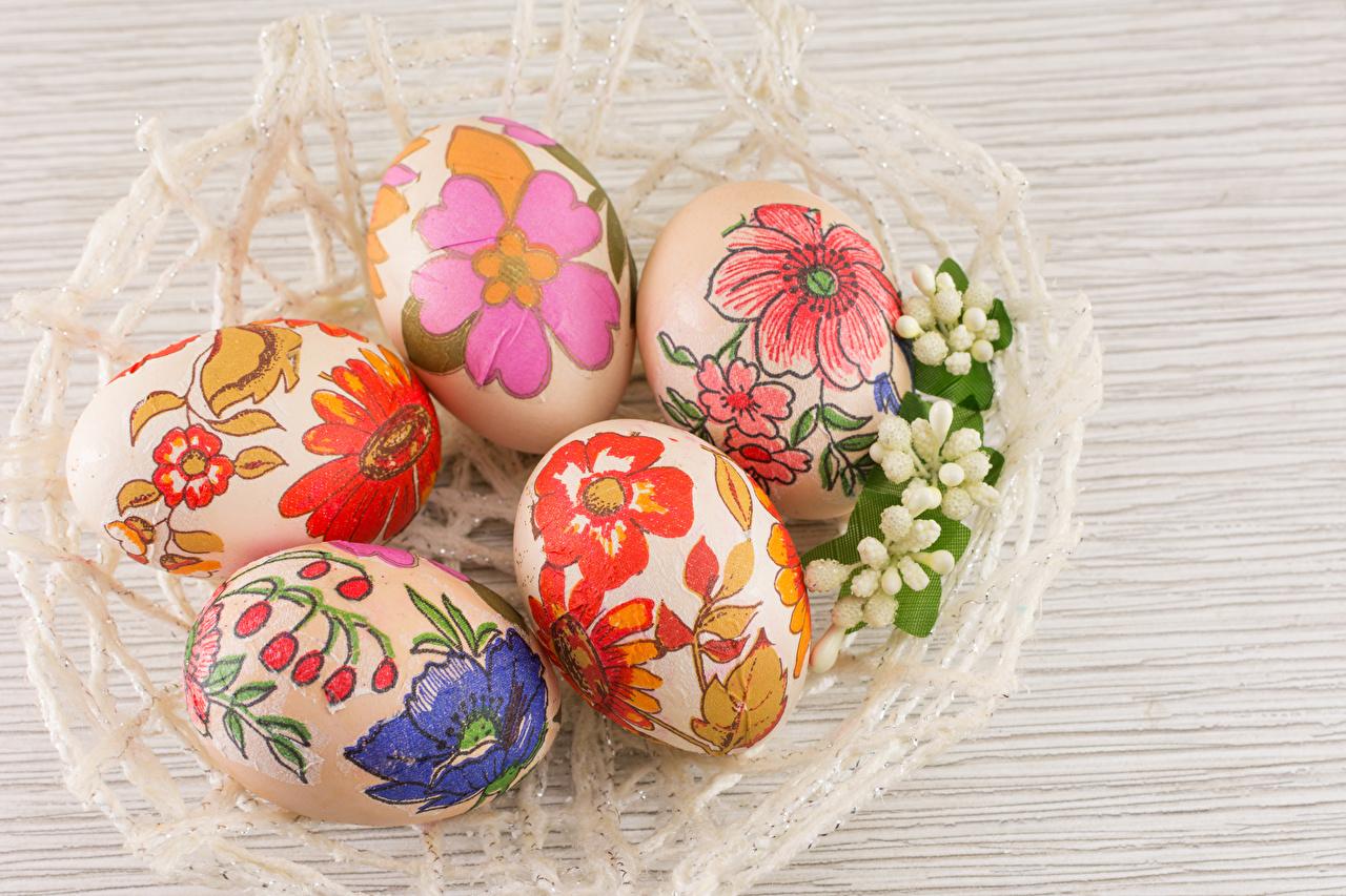 Фото Пасха яйцо Дизайн яиц Яйца яйцами дизайна