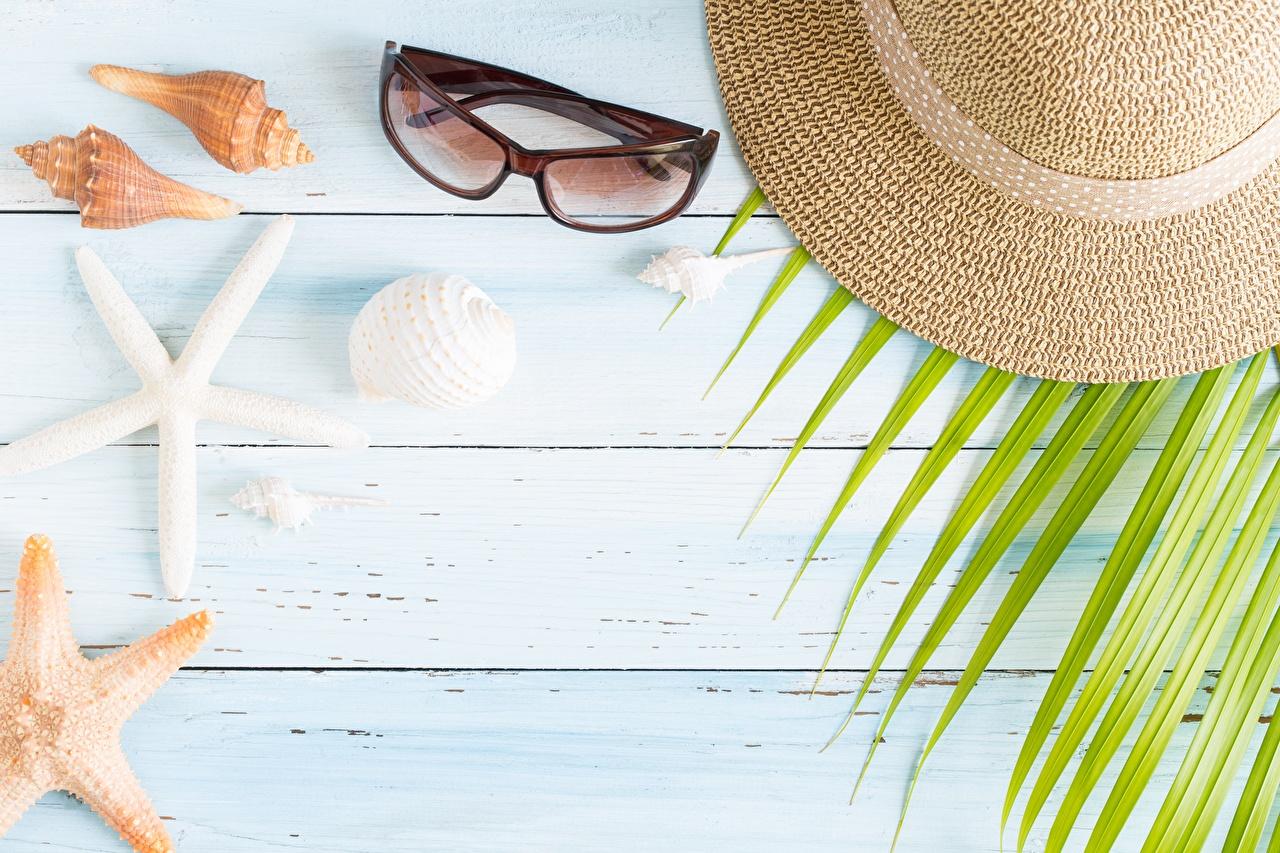 Фотография шляпе Ракушки очках Шаблон поздравительной открытки Доски шляпы Шляпа Очки очков