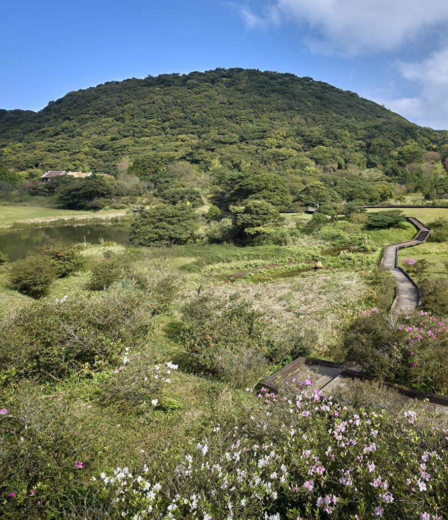 Фотография Китай Mount Bailaka, Taipei Тропа Природа холм Озеро кустов тропы тропинка Холмы холмов Кусты