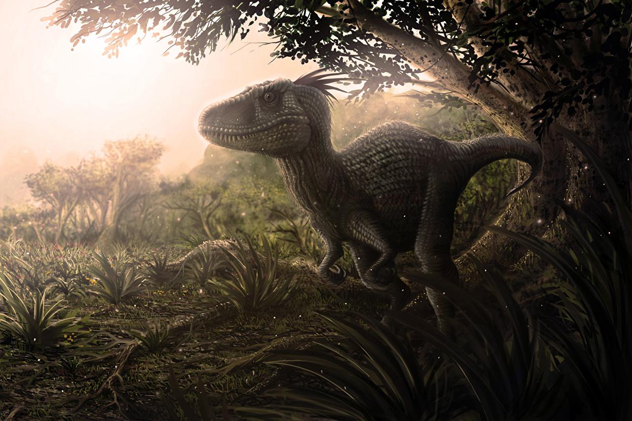 Фотография динозавр животное Древние животные Динозавры Животные