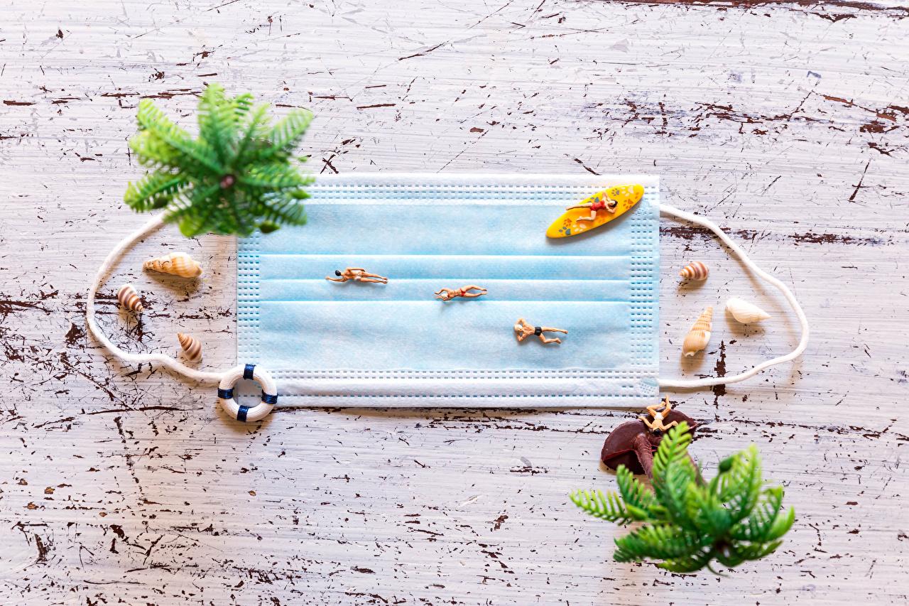Картинки Коронавирус пляжа Ракушки Креатив Маски Пляж пляже пляжи креативные оригинальные