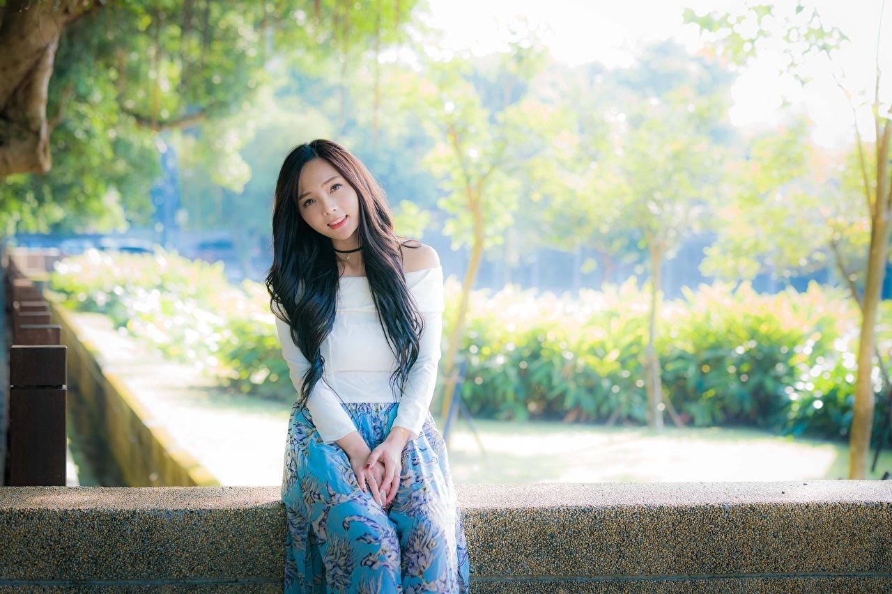 Фотографии Брюнетка боке девушка азиатка Сидит смотрят брюнетки брюнеток Размытый фон Девушки молодая женщина молодые женщины Азиаты азиатки сидя сидящие Взгляд смотрит