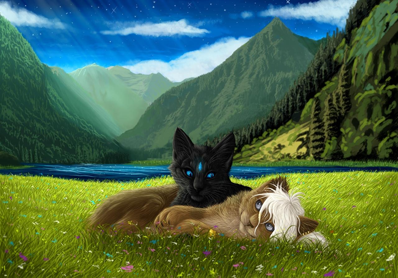 Картинки коты 2 траве животное Рисованные кот Кошки кошка два две Двое вдвоем Трава Животные