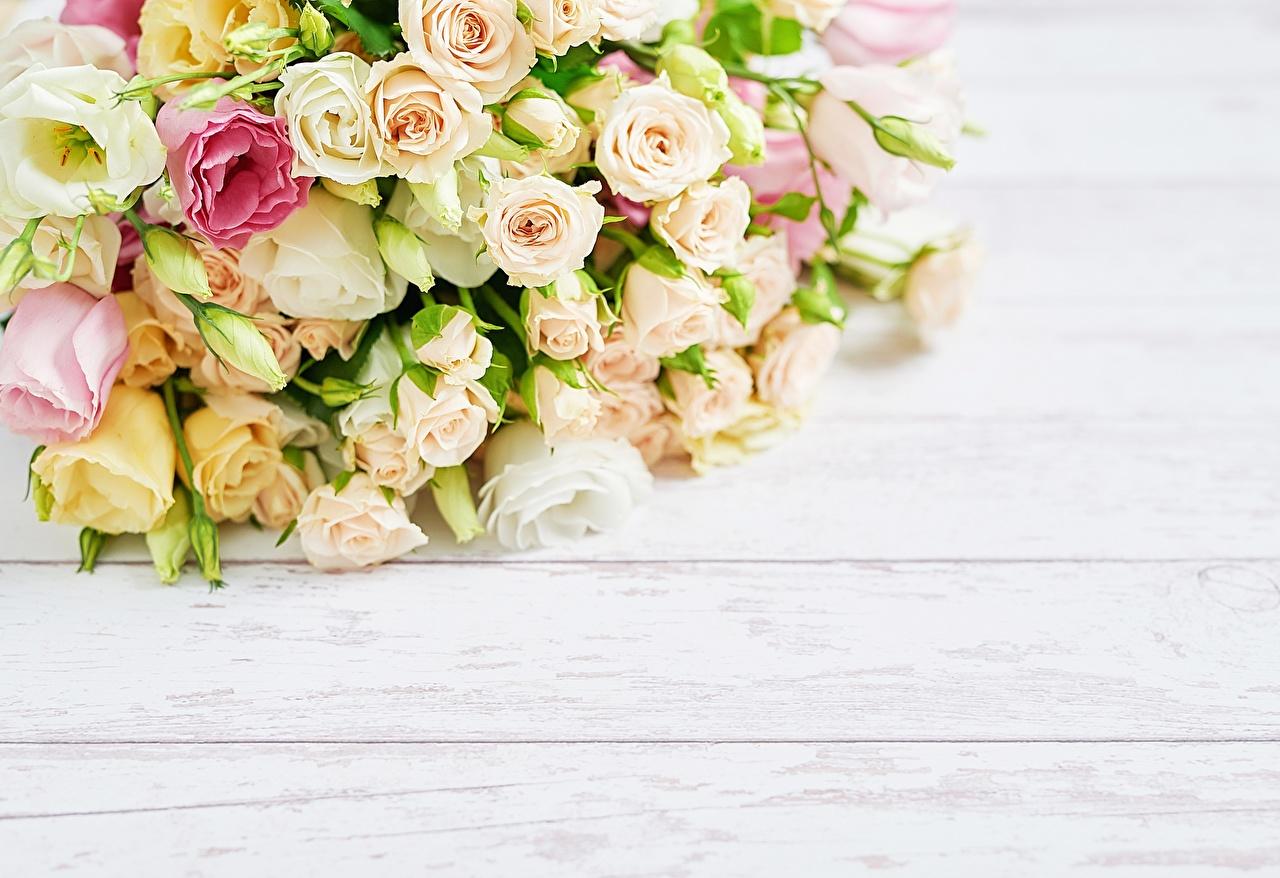 Фотография Букеты роза Цветы Шаблон поздравительной открытки Доски букет Розы цветок