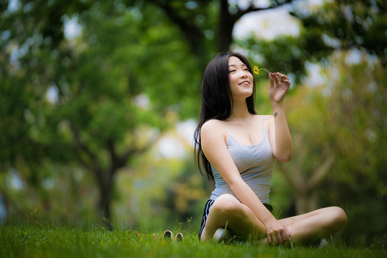 Фото Поза лотоса Брюнетка радостный улыбается Размытый фон Девушки азиатки сидя Руки траве брюнеток брюнетки Улыбка Радость счастье радостная счастливая счастливый счастливые боке девушка молодые женщины молодая женщина Азиаты азиатка рука Трава Сидит сидящие