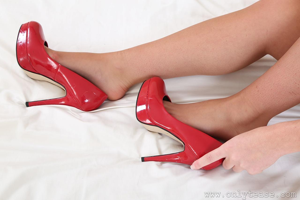 Обои для рабочего стола колготок молодые женщины ног Руки Крупным планом Туфли Колготки колготках девушка Девушки молодая женщина Ноги рука вблизи туфлях туфель