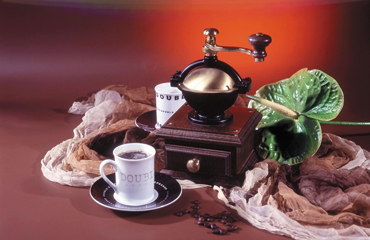 Фотографии Кофе Зерна Антуриум Пища Чашка Еда Продукты питания