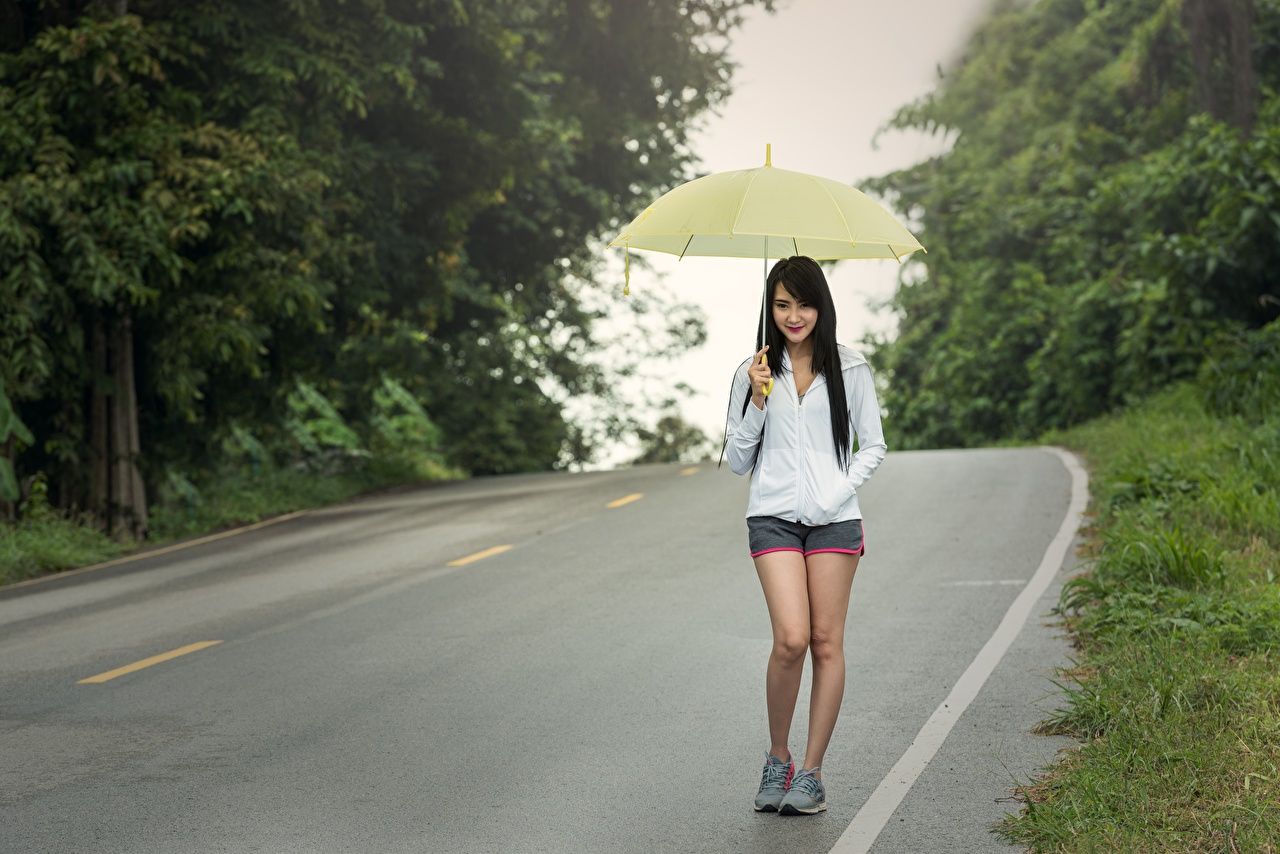 Картинка Брюнетка Девушки Прогулка Азиаты Дороги Зонт Асфальт идет гуляет