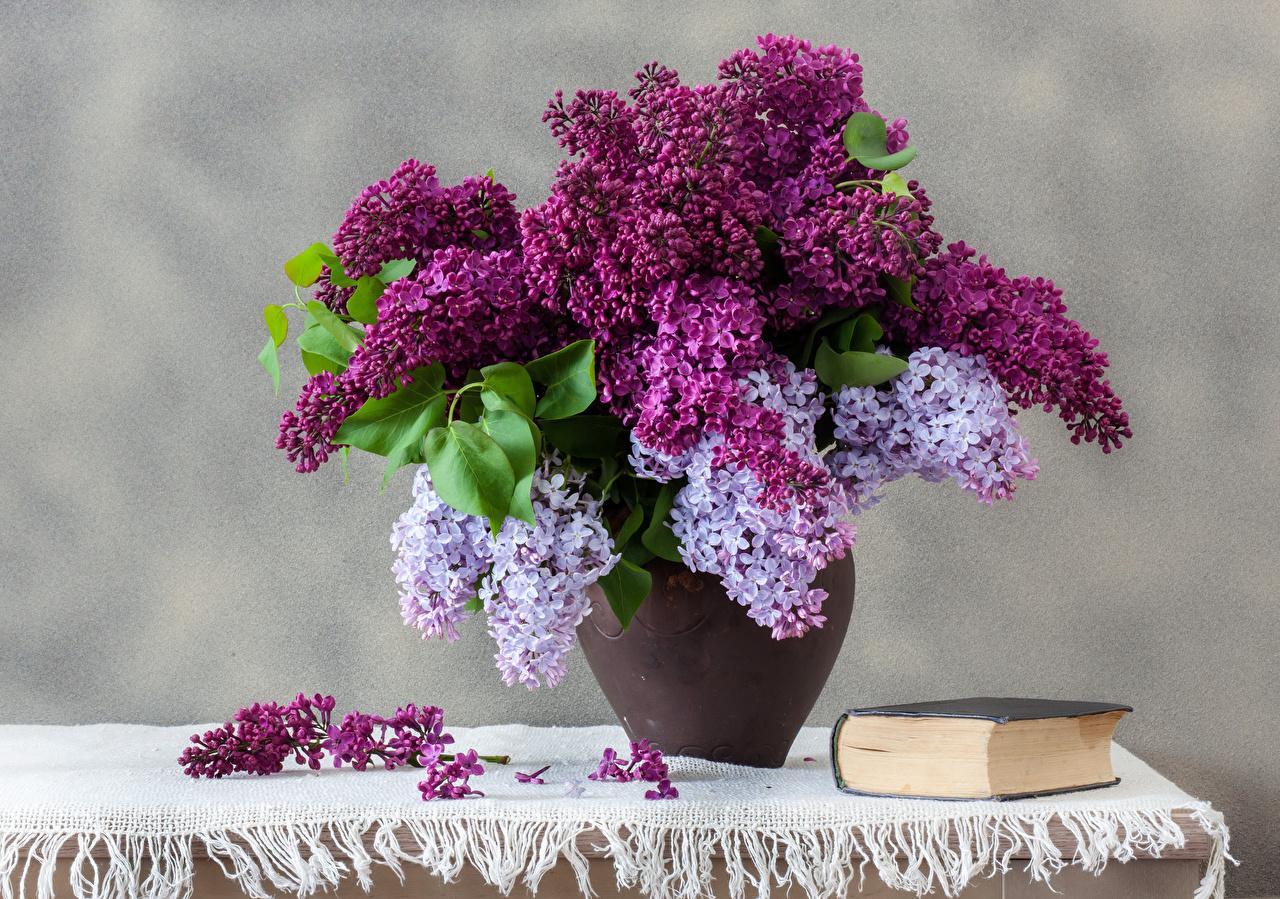 Картинки букет цветок Сирень вазе Книга столы Натюрморт Букеты Цветы вазы Стол Ваза книги стола