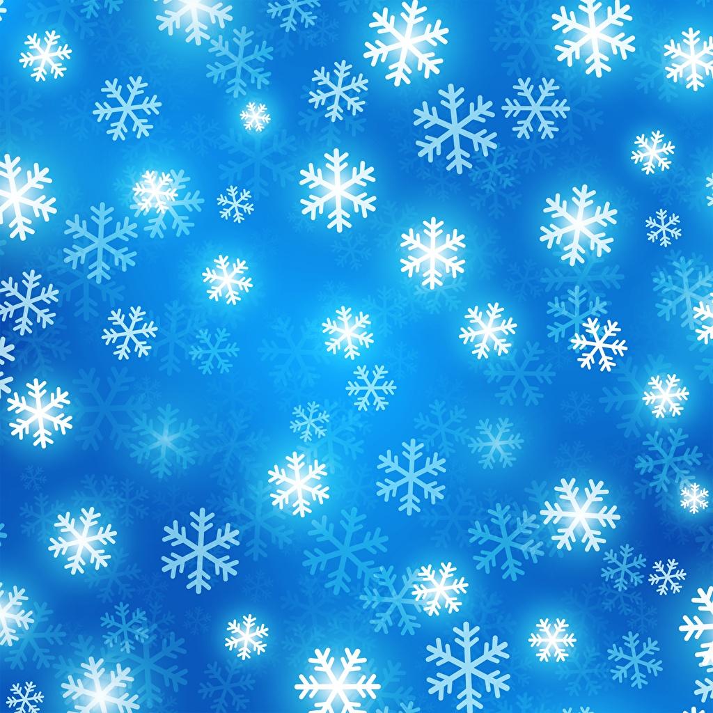 Фотография Текстура Рождество снежинка Новый год Снежинки