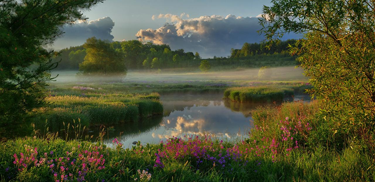 Обои для рабочего стола Канада Wellington County Туман Природа Утро Реки Облака тумане тумана река речка облако облачно
