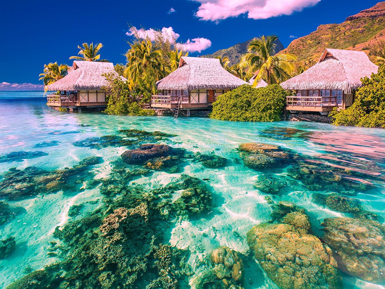 Обои Бунгало Море Природа Тропики