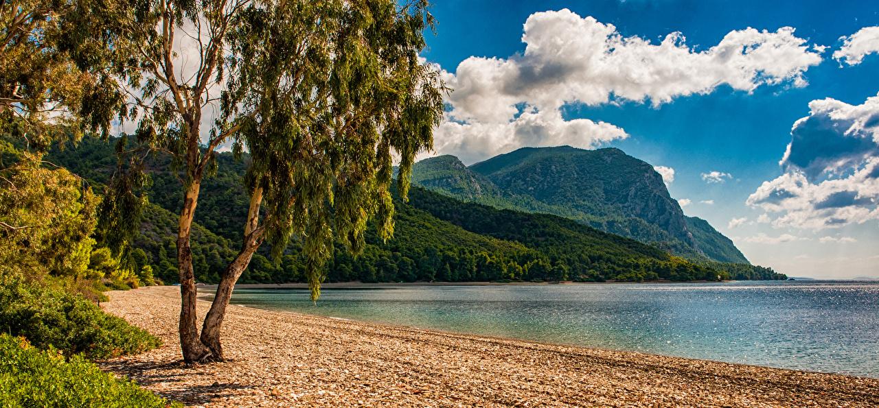 Картинка Греция Island Euboea Скала Природа Залив Побережье Деревья Утес скале скалы берег залива заливы дерево дерева деревьев