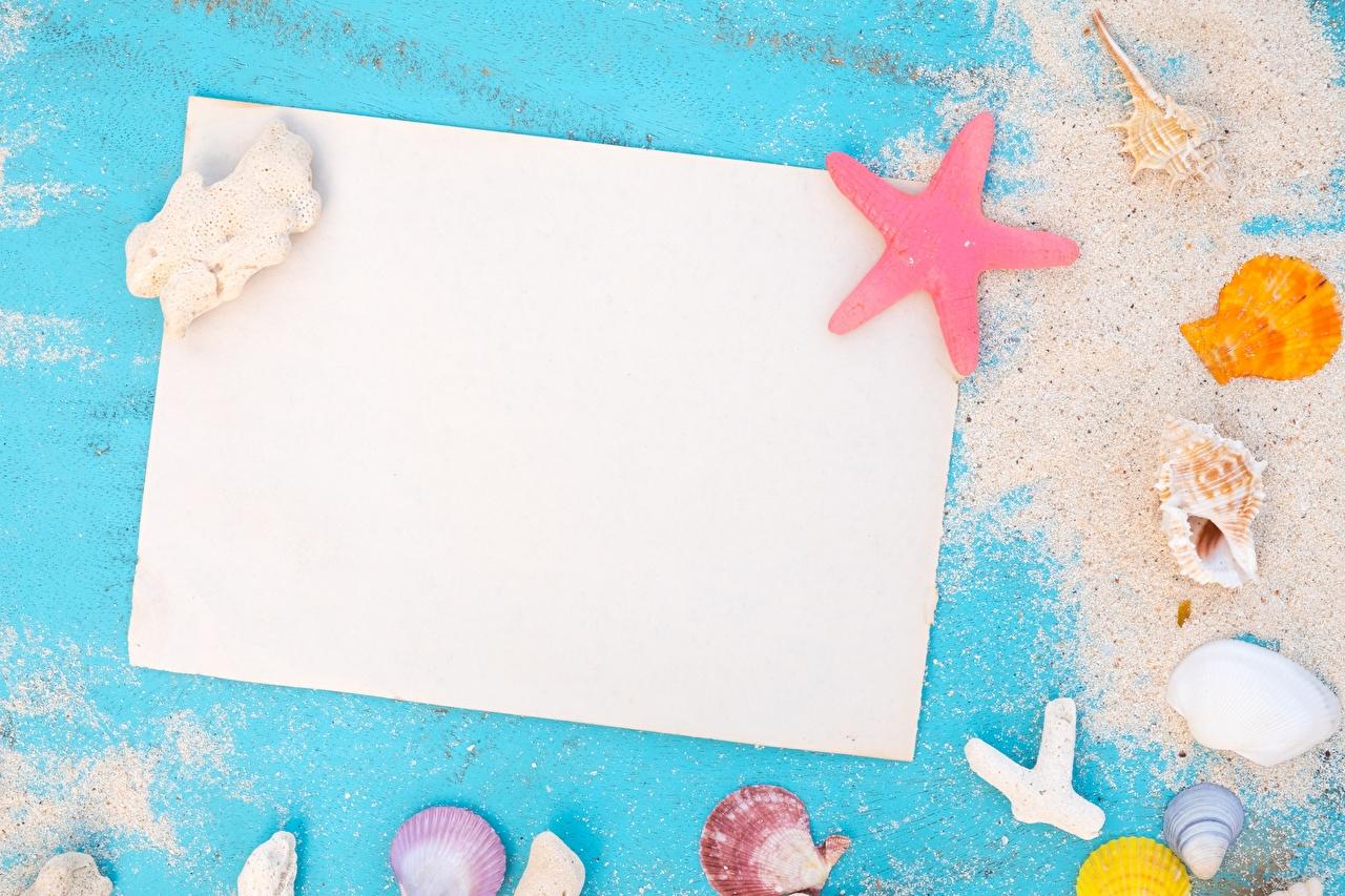 Фото Лист бумаги Лето песке Ракушки Шаблон поздравительной открытки песка Песок