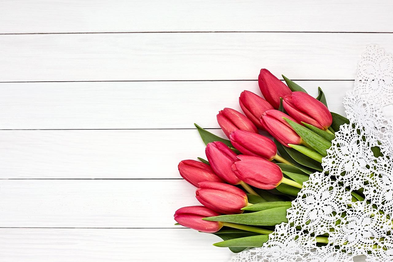 Картинка Красный Тюльпаны Цветы Доски красных красные красная тюльпан цветок
