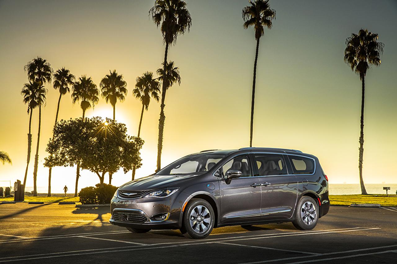Фото Chrysler 2017 Pacifica Hybrid Гибридный автомобиль Серый пальма Автомобили Крайслер серые серая пальм Пальмы авто машина машины автомобиль