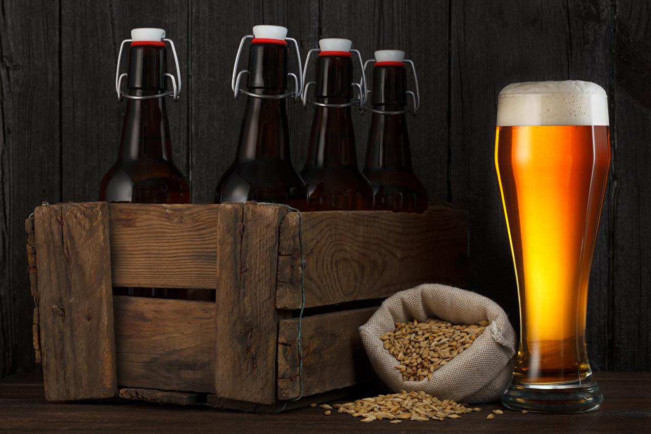 Картинка Пиво зерно стакане бутылки Продукты питания напиток Зерна Стакан стакана Еда Пища Бутылка Напитки